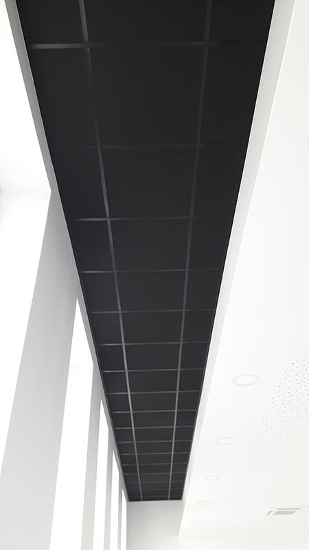 Faux-Plafond décorative noir en Charente Maritime